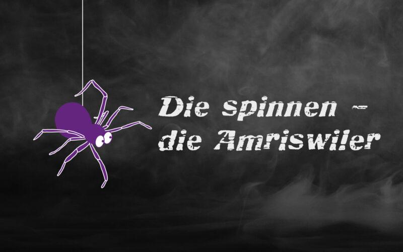 Die spinnen – die Amriswiler